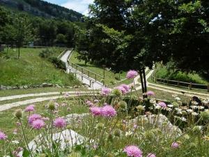 Botanical Garden - prolococapracotta.com